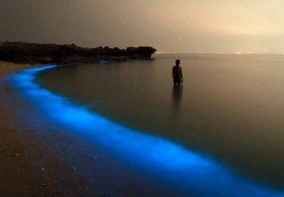 سرمایه گذاری بنیاد مستضعفان برای حضور گردشگران در جذابترین جزیره خلیج فارس