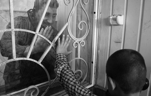 حضور بیش از ۱۲۰۰ زندانی غیر عمد در استان فارس / آزادی ۲۴۲ زندانی از حبس