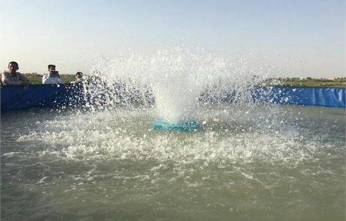 نخستین الگوی پیش ساخته پرورش متراکم ماهی در سیستان و بلوچستان افتتاح شد