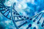 درمان بیماریهای ژنتیکی با ژن درمانی و اصلاح نقصهای موجود در ژنم